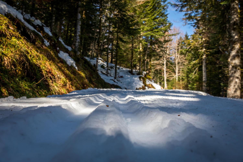 Ski de fond au Falgoux