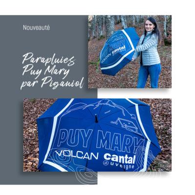Banniere-parapluies